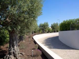 Taman Modern Oleh Jardíssimo Modern