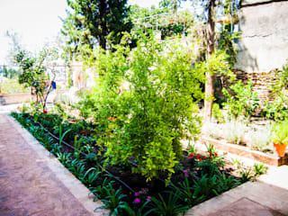 Reforma exterior de Carmen en el barrio del Albayzin (Granada) Jardines de estilo clásico de Landscapers Clásico