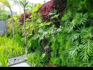 Tropical style gardens by Telhado Verde e Jardim Vertical SP Tropical