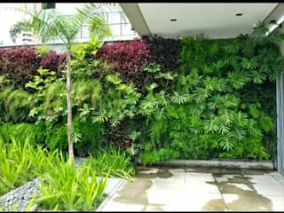jardim vertical Jardins tropicais por Telhado Verde e Jardim Vertical SP Tropical