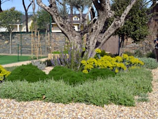 Jardín mediterráneo Jardines de estilo mediterráneo de Irati Proyectos Mediterráneo