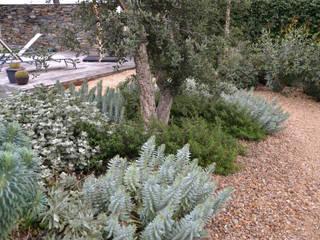 Mediterranean style garden by Irati Proyectos Mediterranean