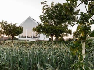 Casa nell'orto Case in stile minimalista di LDA.iMdA architetti associati Minimalista