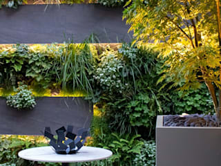 Living Wall Courtyard Garden by MyLandscapes Garden Design Сучасний