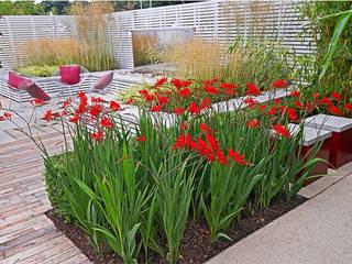 Medium garden design Jardin moderne par Jonathan Mark Garden Design Moderne