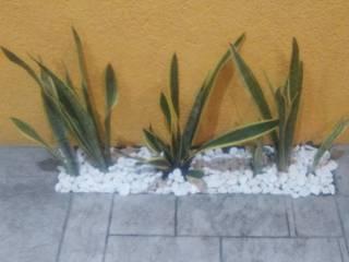 Jardíneria Robles의 현대 , 모던
