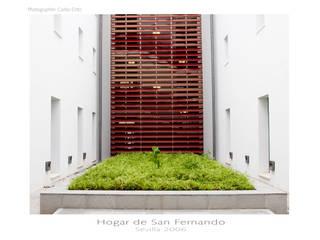 Minimalistischer Garten von Amiel&Jules PhotoLive Minimalistisch