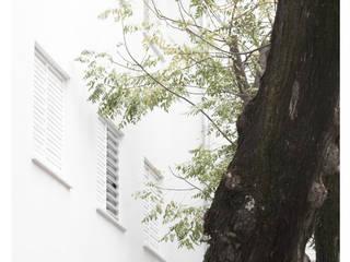 Minimalistische Fenster & Türen von Amiel&Jules PhotoLive Minimalistisch