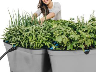Plantta* 花園植物盆栽與花瓶 塑膠 Grey