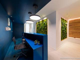 Gabinete Veintiuno Estudios y despachos de estilo minimalista de Pablo Muñoz Payá Arquitectos Minimalista