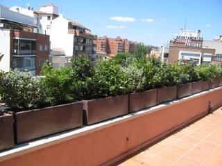 Balkon, Beranda & Teras Modern Oleh Arcadia Jardines y paisajes Modern