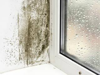 Humedad por Condensación y la solución de Murprotec Puertas y ventanas de estilo clásico de Murprotec Clásico