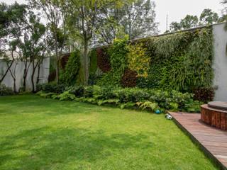 Jardines de estilo moderno de Generación Verde Moderno