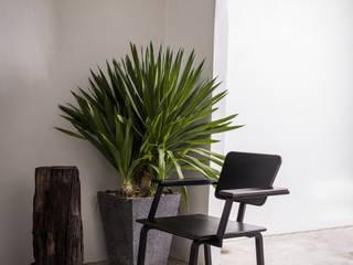 เก้าอี้ซีโน (ZENO CHAIR): ทันสมัย  โดย NICO FURNITURE, โมเดิร์น