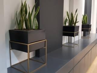 21st Century Funerals: minimalist  by PlantHAUS, Minimalist