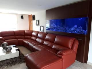 Aquario Marino para Sala de Estar Salones tropicales de Alfquarium Tropical