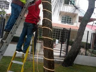 von Electricistas en Zapopan