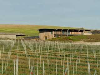 Rathfinny Winery - Designcubed Architects de Designcubed Industrial