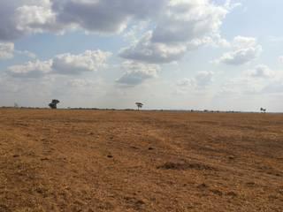 Grandes Fazendas a Venda Em Goias - SILVANO REIS IMÓVEIS (62) 98182-4401 (WhatsApp)/(62) 99366-8506 por SILVANO REIS IMÓVEIS RURAIS