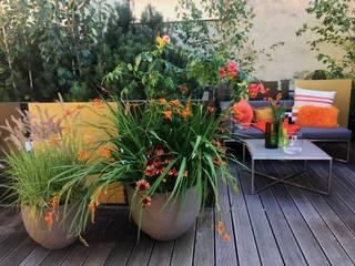 Terrassengestaltung mit Pflanzgefäßen von Atelier Vierkant Blumen & Gärten Balkon, Veranda & TerrasseAccessoires und Dekoration