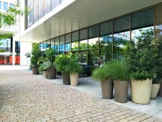 Terrassengestaltung mit Pflanzgefäßen von Atelier Vierkant Blumen & Gärten Geschäftsräume & Stores