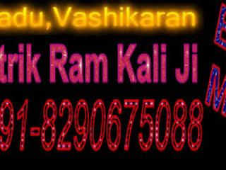 Vashikaran Mantra To Get Ex Boyfriend Back Asian style event venues by Vashikaran Specialist Tantrik Baba in Delhi +918290675088 Asian