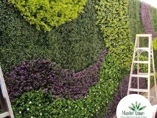 Jardines de estilo moderno de Muros Verdes Aguascalientes Moderno