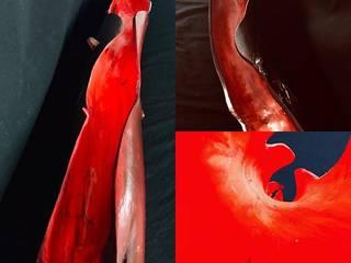 ValentinaSullivan ArtworkOther artistic objects Kayu Red