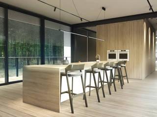 Nowoczesne i modernistyczne wnętrza domu horyzontalnego od Budownictwo i Architektura Marcin Sieradzki - BIAMS Nowoczesny