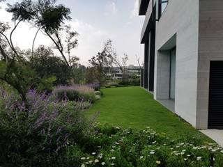 Jardin moderne par Solution Culture Moderne