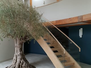 Helical Staircase in Limed Oak by Boss Stairs Limited Modern