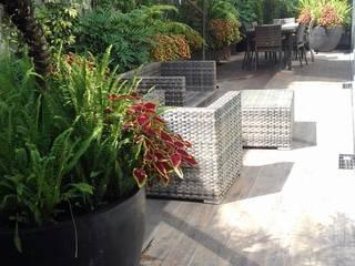 Renovación de Terraza en Polanco Ciudad de México de 11 creativos Mediterráneo
