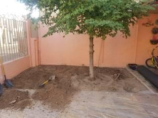 de 🌳Servicios de jardinería Torres 🌳 Moderno