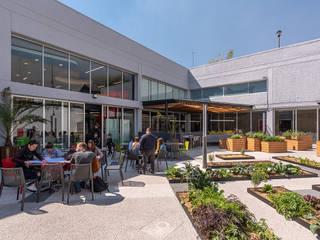 ARCO Arquitectura Contemporánea Сад