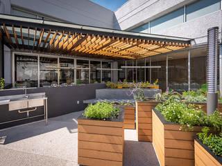 Modern garden by ARCO Arquitectura Contemporánea Modern