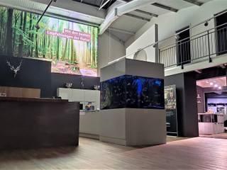 Schwarzwald Küchen Showroom - Flagshipstore Singen: modern  von Schwarzwald Küchen Singen,Modern