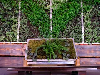 Life Panel LAB lo spazio dedicato alla cultura sostenibile Giardino moderno di Life Panel snc Moderno