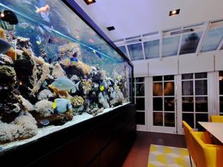Los acuarios como elemento revitalizante de espacios. Bares y clubs de estilo asiático de Kaminature Asiático
