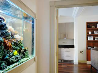Los acuarios como elemento revitalizante de espacios. Edificios de oficinas de estilo moderno de Kaminature Moderno