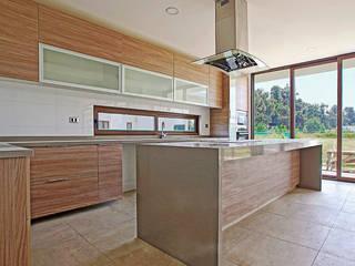 MUEBLES DE COCINA - OFICINAS - BAÑOS - COMEDORES Martin Rojas Arquitectos Asoc. CocinaAlmacenamiento y despensa
