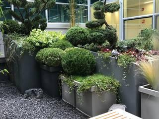 giardini interni Giardino moderno di I Giardini di Anna Moderno
