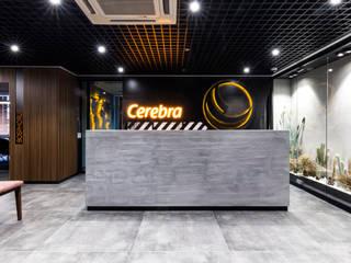 Cerebra CPAs & Advisors Mürekkep Tasarım Atölyesi Modern