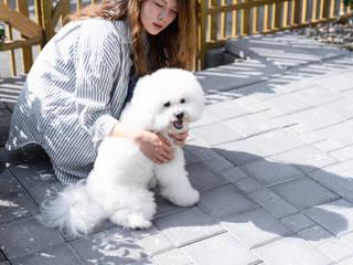 by 有隅空間規劃所 Minimalist