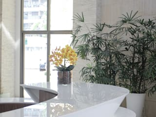 modern  by Viviane Cunha Arquitectura, Modern
