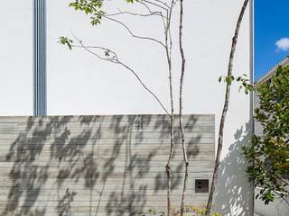 立体テラスのあるコートハウス モダンな 壁&床 の 福田哲也建築設計事務所 モダン