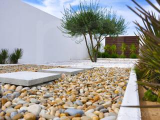 Espaços Jardins modernos por Intempornânea Moderno