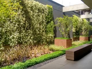 JOÃO JADÃO PAISAGISMO Tropical style garden