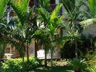 RESIDÊNCIA TOQUE TOQUE Jardins tropicais por JOÃO JADÃO PAISAGISMO Tropical