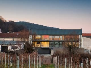 Haus an den Weinbergen von Erwin Becker Architekt BDA Modern