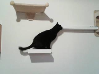 Parete attrezzata per gatti felici! di Arch. Sara Pizzo - Studio 1881 Eclettico
